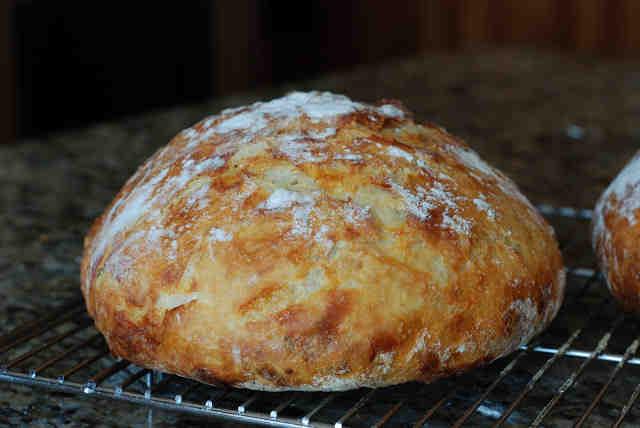 Pan levadura seca