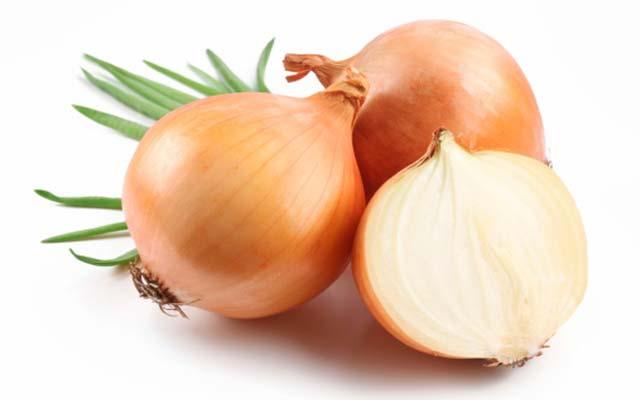 Tipos de cebolla