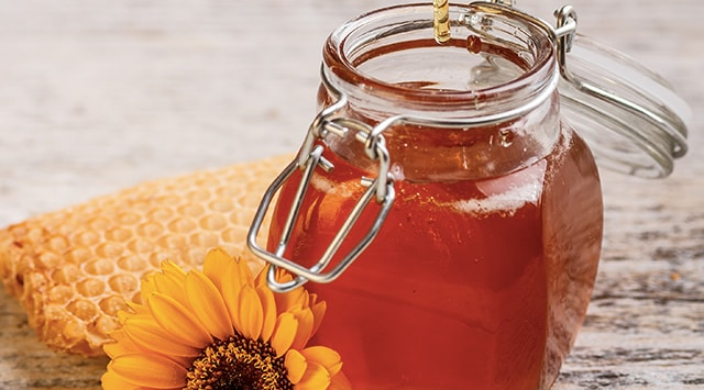 cordero a la miel