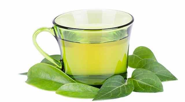 Mousse de té verde
