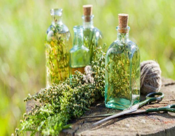 Receta deLicor de hierbas casero