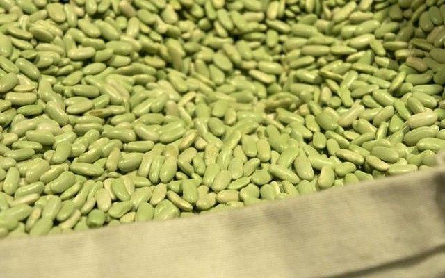 Alubias verdinas con almejas